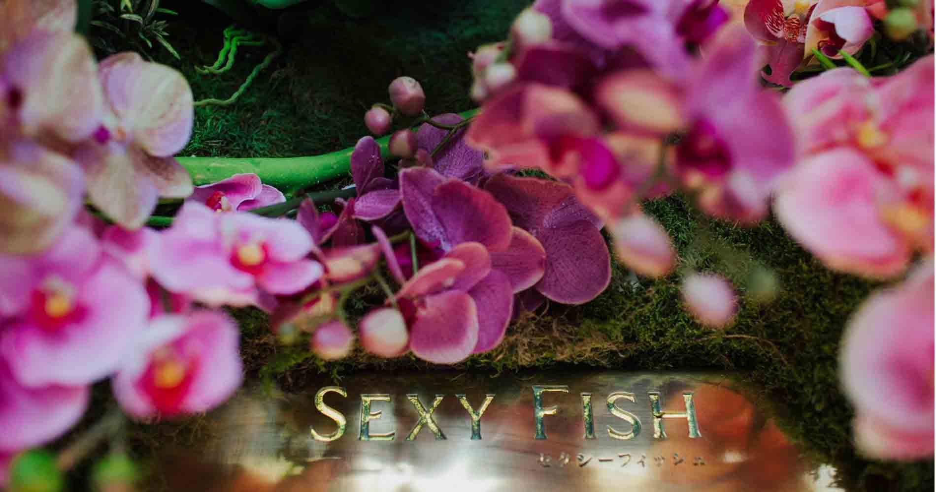 Sexy Fish Early Hours