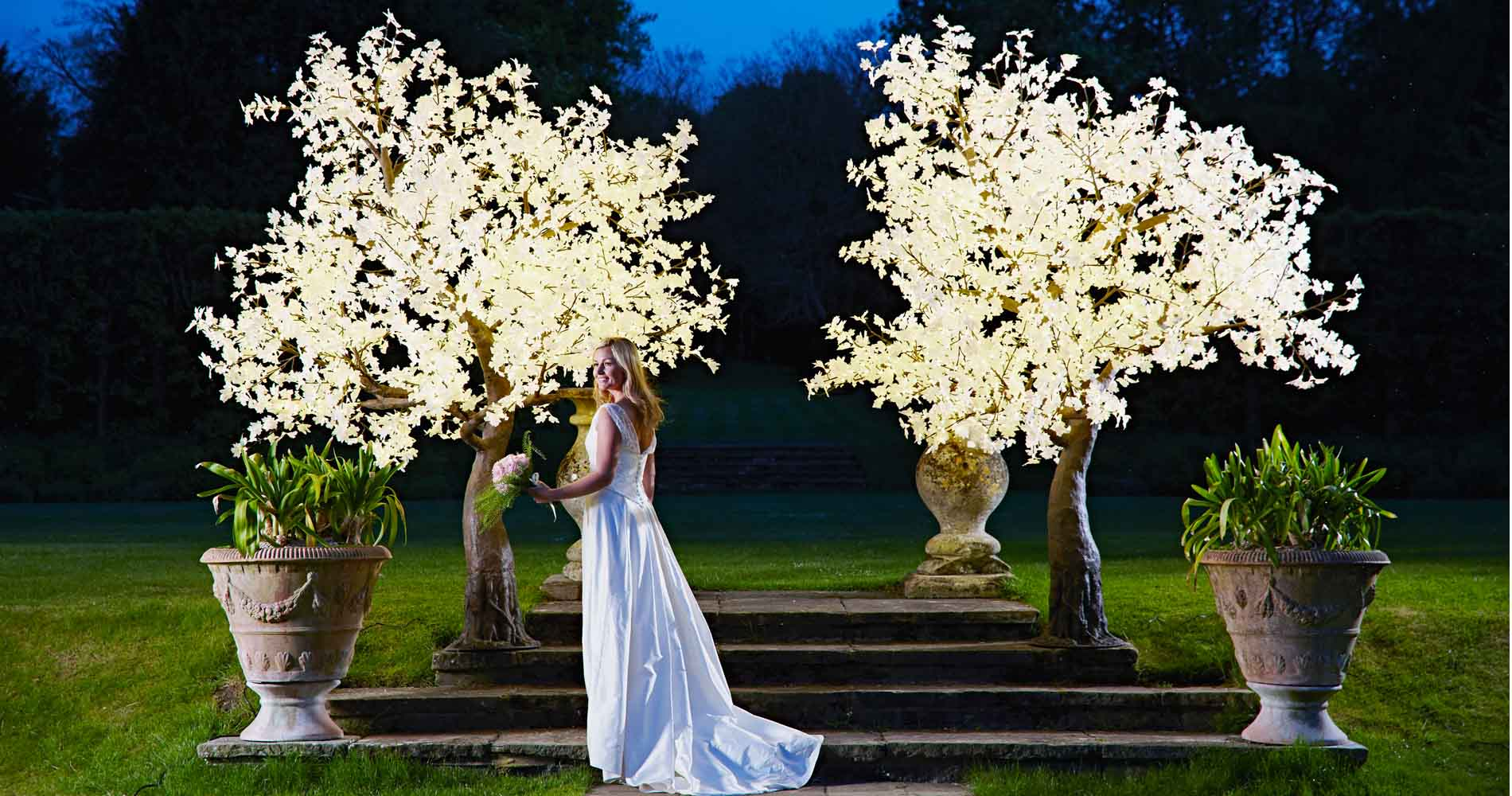 Twilight Trees Garden Bride