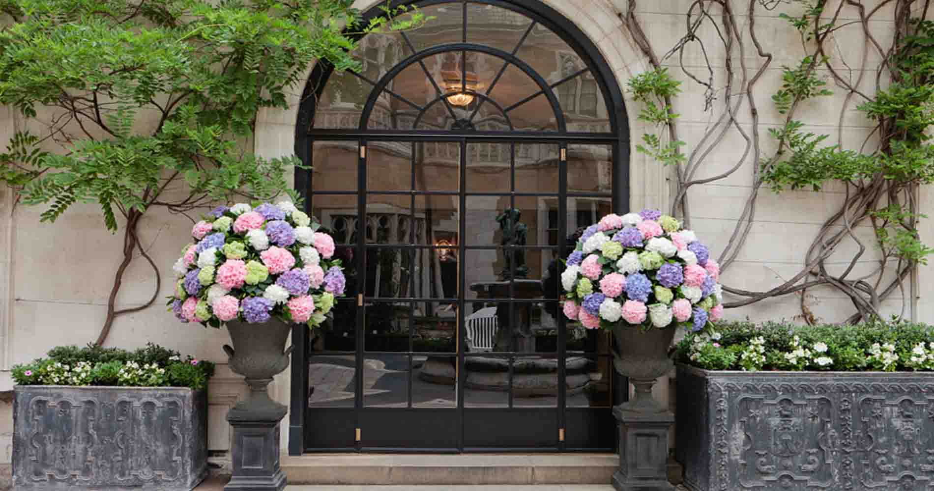 Event Flowers Summer Party Hydrangea Verna Hayford And Rhodes